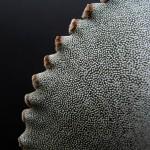 Astrophytum myriostigma v. jaumavense