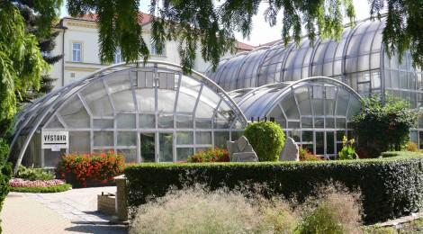 Výstava sukulentů a dalších exotických rostlin Brno 2014