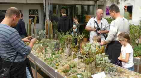 Návštěvnost výstavy trhá rekordy